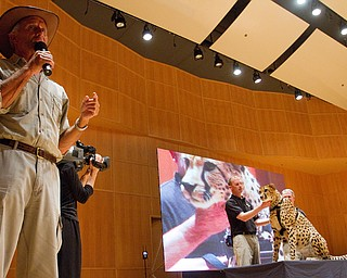 "Geoffrey Hauschild|The Vindicator.""Don't go to the bathroom unless you can do it faster than 75 mph,"" Jack Hanna said only half joking before bringing a cheetah on stage during a performance by the Youngstown Symphony in conjunction with Jack Hanna at the DeYor performing Arts Center on Sunday afternoon."