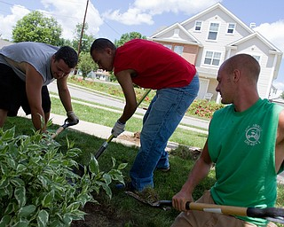 Geoffrey Hauschild|The Vindicator.7.1.2010.Student, Kevin McCoy, Danny Scott, and Austin Henderson work as part of a regular work crew at Arlington Heights in Youngstown.