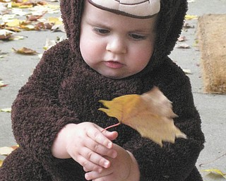 Jennifer and Kevin Willis of Boardman sent in this adorable photo of their son Brooks. He was just a year old when this picture was taken last Halloween.