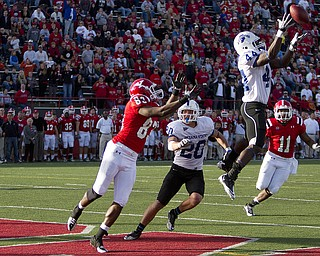Geoffrey Hauschild|The Vindicator.Indiana State's Larry King (44) intercepts a pass intended for YSU's Andre Barboza (83) in Youngstown's endzone during the fourth quarter of a game at YSU's Stambaugh Stadium on Saturday afternoon. (Indiana State #20: Dillon Painter) (YSU's #11: Kevin Watts)