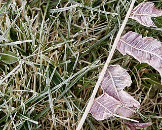 Frost covers the ground as the sun rises Friday morning. (Geoffrey Hauschild | The Vindicator)