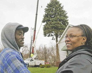 Rubey and Donna Taylor watch as a large blue spruce is cut from the yard of their home on Clay Street on Youngstown's East Side on Wednesday. They donated the tree to the city to be used as the city Christmas tree. Donna Taylor said she was excited and blessed to have her tree selected for the honor.