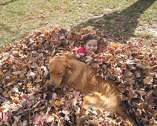 4-year-old daughter Carley Johnston of Poland enjoyed a beautiful fall day playing with Tucker, the family's golden retriever mix. Photo taken in October by her mom, Cara Johnston.