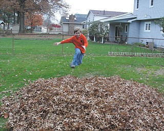 Robert Fay is about to rearrange this pile of leaves.