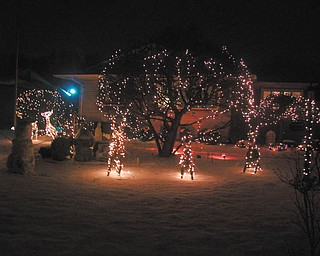 Bill Kerr's holiday lights shine bright on his street in Poland.