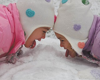 Sally Jones of Canfield snapped this photo of her twin daughters, Lindsay and Allison, 5 1/2, while they were having a snow-eating contest.