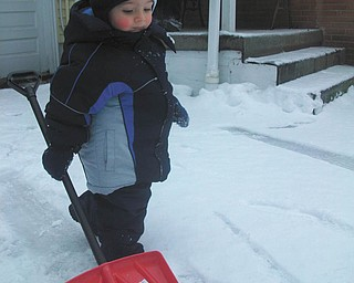 After his first sled-riding adventure, 18-month-old Jimmy Putko of Boardman decides he wants to shovel the driveway.