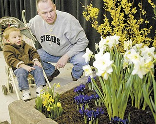 Chuck Nay of Greenville, Pa., and his son, Brodie, 21 months, take in the sights at the Mahoning Valley Home and Garden Show Saturday.