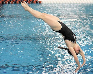 Youngstown State sophomore diver Casey Hill prepares to enter the water as she dives from a platform during a swim meet. Hill and her Penguins teammates will participate in the Horizon League championship meet, which begins today and lasts until Saturday. Hill will compete in the 1- and 3-meter diving competitions.