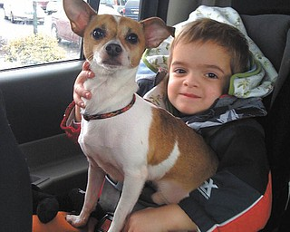 Jimmy Lipjanic, 3, became immediate best friends with Diesel, his pet rescue dog from Animal Charity. Here they are, riding home to Boardman. Jimmy's parents are Jim and Candace Lipjanic, and Candace sent in the photo.