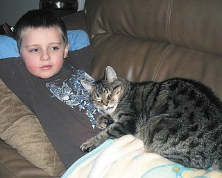 It looks like Zackary Hull, 4, of Poland and Jobe are about to take a cat nap!