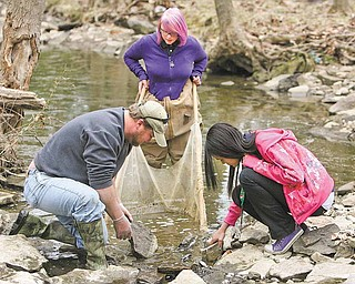 Kassidy Vath, center, works with Sean McGuire, of Mahoning County Soil and Water, and Theresanne Garcia, as they search for organisms in the Ax Factory Creek Wednesday. Both girls are in eighth grade at Volney Rogers Middle School.