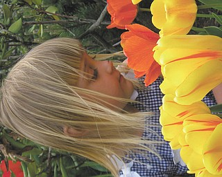 Connie Spin of Boardman sent in this photo of her daughter Noelle, who was 4 at the time, smelling the neighbor's tulips. Noelle is 6 and still looks forward to the spring flowers.