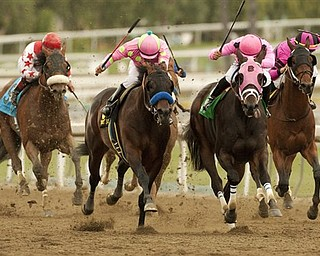 In a photo provided by Benoit Photo, Midnight Interlude and jockey Victor Espinoza, second from left, overpower Comma to the Top, with Corey Nakatani, right front, to win the $1 million Santa Anita Derby horse race Saturday, April 9, 2011, at Santa Anita in Arcadia, Calif.