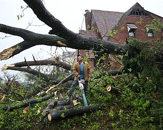 Rick Gamma, whose family owns Gamma Tree Service, surveys his progress in cutting up a tree that blew down on Royal Avenue during Friday night's tornado, on Saturday, April 23, 2011, in Ferguson, Mo.