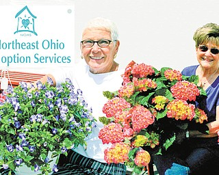"""Arranging plants and organizing volunteers for the """"Eight Bloomin' Days Only"""" flower sale to be presented by NOAS from May 4 through May 11, which includes the Mother's Day weekend, are from left, Gere Weller of Liberty and Janet Weller of Canfield, co-chairwomen of the event."""