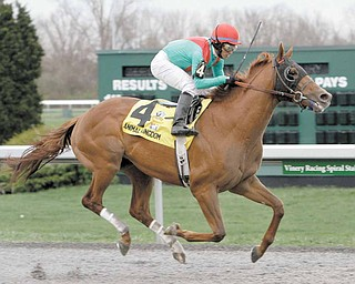 Jockey Alan Garcia guides Animal Kingdom to a two-length victory in the $500,000 Spiral Stakes horse race at Turfway Park race course in Florence, Ky., Saturday, March 26, 2011.
