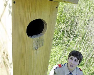 Eagle Scout candidate Joe Lonardo, 15, of New Springfield, looks over one of the nest boxes he and fellow Troop 119 members built and installed at the Mill Creek MetroParks' Lake Newport. The boxes are designed to give wood ducks a place to safely nest their eggs.