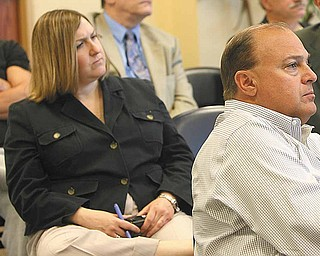 In this March 25, 2010, Vindicator File Photo, Lisa Antonini speaks to the media about the purchase by the  county of Oakhill Renaissance Place.