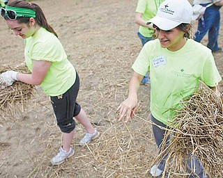 Monica Mattiussi, 15, of Austintown, and Kristina Aiad-Toss, 15, of Poland, spread hay after seeding a vacant lot on East Lucius Avenue. The two were volunteering for Project Grow with other students from the Catholic Diocese of Youngstown on Saturday.