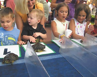 "Tots and turtles: The Youngstown Lions Club and the turtles are getting ready for the big race, the 50th Annual Turtle Derby. The race will take place at 6:30 p.m. June 20 during the ""Cruising on the River Car Show"" on East Water Street in Lowellville."