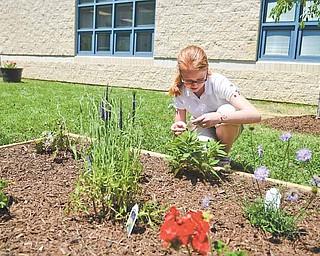 Volney Rogers sixth grader Jazmin Schwab, 13, identifies different plants in a garden planted in the middle school's courtyard to memorialize the school's namesake.