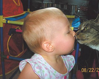 Madison Wright of Salem adopted Noah the Cat in August 2008. Or, was it the other way around?