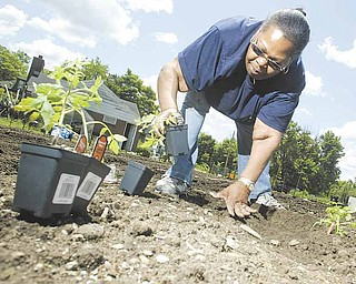 Jamie Hayes prepares to plant her garden at Jubilee Community Garden on Lafayette Street in the Brier Hill section of Youngstown. Hayes, above, said Monday she learned about gardening from her great-grandmother  while growing up in Dayton. Youngstown has several community garden sites, and all 33 plots at Jubilee are taken.