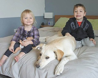 "Lemon, 1 1/2, the ""granddog"" of Carol and David McKay of Boardman, was 4 months when adopted by Kourtney and Nate Ross of Chicago in February 2010. Kenley Smith, 2 1/2 (left), and Ian Smith, 4 1/2 (right), are the children of Kimberly and Greg Smith of Chicago and the McKays' grandchildren."