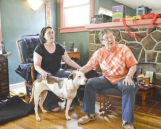 North Side neighbors Gretchen Brown, left, and L.J. 'Tess' Tessier are part of a group who rescued Billie Jean, a year-old mixed-breed stray. Billie Jean, who'd been shot and had to have a leg amputated, is ready for a permanent home.