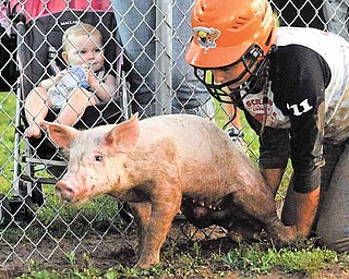 A young spectator watches the Clark County Fair's Pig Scramble event in Springfield, Ohio Friday, July 29, 2011. (AP Photo/Springfield News-Sun, Bill Lackey)
