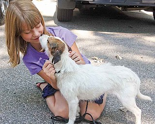 Nine-year-old Johnna Blystone of Austintown made a quick connection with a Jack Russell terrier Saturday the  Mahoning County Dog Pound's first adopt-a-thon. Officials hoped the event would reduce the number of loving companion dogs that will have to be euthanized to make space for more dogs to come into the facility.