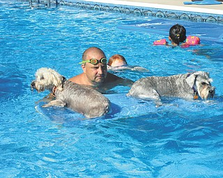 Norma Remias of Canfield sent this picture is of Bailey and Daisey enjoying a ride on a raft in the pool along with their owner Bryan.