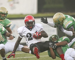 ROBERT K. YOSAY | THE VINDICATOR..BRINGIN HIM DOWN - Ursulines #25  Tramain Thigpen, #24 Jermaine Williams #1 Anthony Davis and by the leg #6 Shannon Hightower bring down #24 Red Lions Wendell Smallwood - -- Youngstown Ursuline vs Red Lion  Christian Academy  at Stambaugh Stadium  Friday night. .----..... -30-