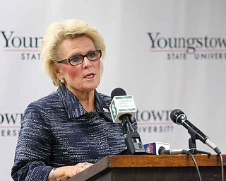 Youngstown State University President Cynthia Anderson told guests at a gathering to unveil the new solar-panel system that the university is committed to partnering with local businesses and industry.