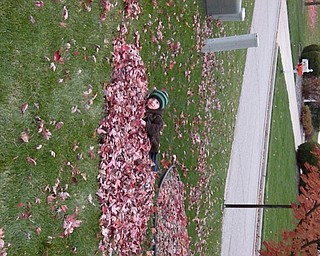 Anthony Dominic Triveri of Poland, who is almost 5, says unlike his dad, he can't wait until the leaves begin to fall so he play in them. Anthony's mom, Kim Triveri, sent in this photo.