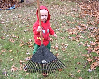 Joey Lettieri, 3, helps to rake leaves at the home of his grandmother, Joanne Shutrump of Boardman, who sent in this photo. Joey is the son of John and Mary Jill Shutrump Lettieri of Hatteras Island, N.C.