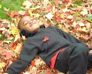 Stevie Woodberry of Youngstown plays in the yard while his dad rakes leaves. Photo sent in by T. Sharon Woodberry.