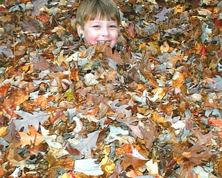 Kathy Mirts of Canfield shot this photo of her nephew, Cerek Szczyglowski, playing in the leaves. Cerek was visiting his aunt from Concord, Ohio.