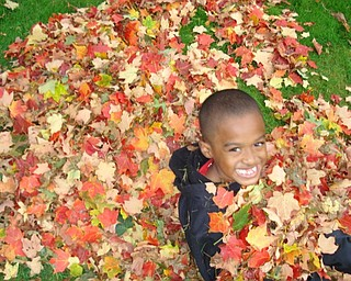 Stevie Woodberry finds fun in the leaf pile at his Youngstown home. Photo sent in by T. Sharon Woodberry.