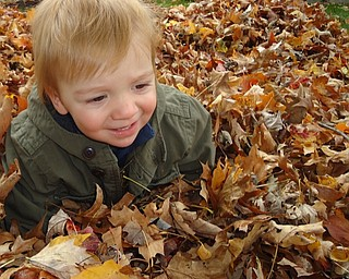 Lucas Dell plays among the leaves. He is the son of Tricia Dell of Austintown, who took this photo and sent it in.