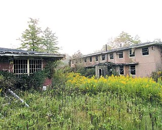The former Trumbull County Nursing Home is overgrown and abandoned — the perfect place for Matt Adkins and Chris Rosier of Laythrom Media to shoot their first full-length feature film, which is a psychological drama, according to Adkins.