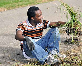 James Spikes sits down to weed at Austintown Community Park. Fitch High School students helping on the site are in a functional life-skills and academic curriculum.