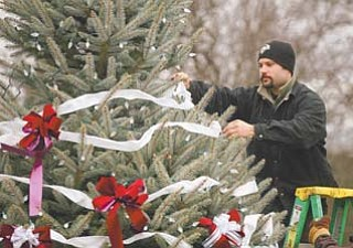 Gabe Manginelli, a Boardman Park groundskeeper, helps decorate the Boardman community Christmas tree, a Fat Albert Colorado Blue Spruce. The official lighting of the tree will be Sunday.