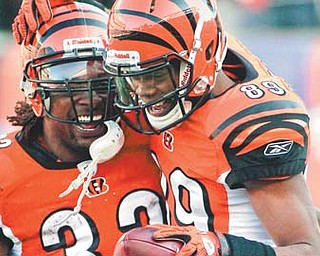 Cincinnati Bengals wide receivers Jerome Simpson (89) and Cedric Benson celebrate after Simpson somersaulted over Arizona Cardinals LB Daryl Washington for a fi rst-half touchdown in Saturday's game in Cincinnati. The aerial feat surprised teammates, fans and Simpson.