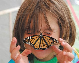 Ella Nagy, now 5, was 4 when her mom, Colleen Nagy, took this picture in the butterfly tent at the 2011 Canfield Fair.