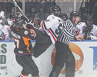 J.T. Stenglein of the Youngstown Phantoms (17) knocks the Waterloo Black Hawks' Eddie Wittchow (51) into the boards during a USHL game Thursday at the Covelli Centre. The game was tied 3-3 in the third period when Mike Ambrosia scored the winning goal to Youngstown the 4-3 victory.