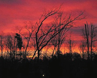 This sunrise in Chapel Hill, N.C., in February 2005 was submitted by Bridgit Frost.