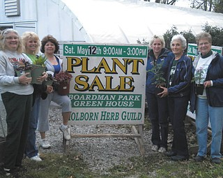 The annual plant sale sponsored by Holborn Herb Growers Guild is planned for 9 a.m. to 3 p.m. May 12 at the Boardman Park Ex-servicemen's Pavilion (across from park offices). Featured will be culinary and decorative herbs, annuals, perennials, everlastings, fairy gardens and geraniums. The Holborn Herb Growers maintain the gardens throughout Western Reserve Village in the Canfield Fairgrounds and at Boardman Park's Summer Kitchen. From left to right are Lois Martin-Uscianowski, Sue Petrollini, Laura Bailey, Yvonne Ford, Judy Moore and Jo Bradfield.