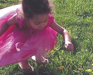 Mia Jackson, 3, picks flowers in her yard. Her mom, April Hatfield, who sent in this photo, said Mia likes to wear princess dresses for everything she does.